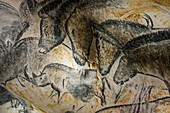 Horse panel, Caverne du Pont d'Arc, France