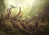 Cambrian sea life, illustration