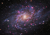 Triangulum Galaxy (M33), optical image