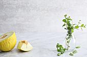 Fresh honeydew melon and mint