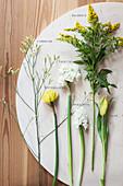 Blumen für Frühlingsfloristik: Tulpen, Narzissen, Hyazinthe, Goldrute und Strandflieder