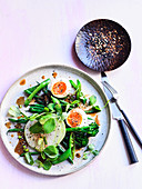 Green Salad with Beans, Apple, Soft Boiled Egg, Miso and Maple Dressing