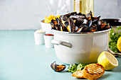 Belgian mussels in white wine with lemon, herbs and french fries