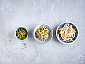 Mung beans, sprouts and sprouts