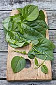 Frisch geernteter Malabar-Spinat auf Holzbrett