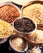Variations of rice
