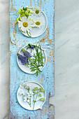 Ox-eye daisies, rapeseed, rampion, chickweed and bladder campion
