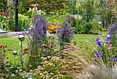 Sommerlich blühende Beete in Schrebergarten, zusammengebundene Lavendelbüsche