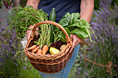 Woman holding a basket with freshly picked vegetables