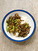 Dried cricket insects and celery teriyaki with rice