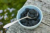 Blackberries in bowl on grey wood deck