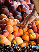 Apricots being bought in a French market