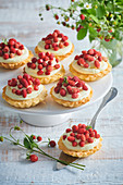 Tartlets with wild strawberries