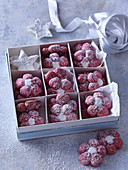 Sugared Cranberry flowers in present box for Christmas
