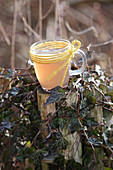 Nerve tea made from various herbs