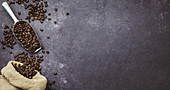 Coffee beans in a sack on grey background