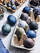 Eggs of different shades of blue
