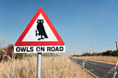 Owls on road warning sign