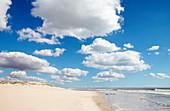Beach, West Coast, South Africa