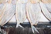 Salted snoek fish