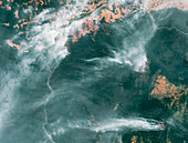 Forest fires in the Amazon, satellite image