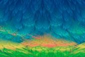 Fractal abstract landscape.