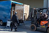 Volunteers loading boxes of food