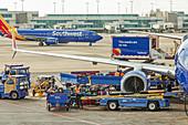 Ground crew servicing a plane