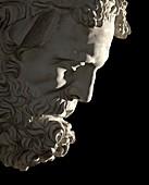 The marble head of Silenus.