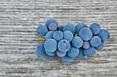 A bunch of Concord Grape on grey wood