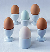 Selection of organic eggs in egg cups