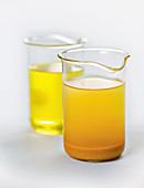 Turmeric oil from molecular cuisine