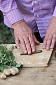 Andorn-Pillen herstellen (gegen Husten und Halsschmerzen): Teig zu einem Würstchen rollen