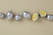 Silver painted yellow lemons for decor table of beige background