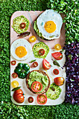 Bread topped with guacamole, fried egg and tomatoes on a cress lawn