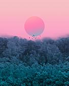 Pink sun in mist above forest, illustration