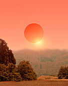 Sunset over a forest, illustration