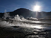 Steaming geysers and early morning light at El Tatio, Chile