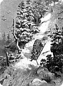 Man transporting wood with sledge, 19th century illustration