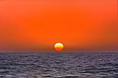 Rising Sun, illustration