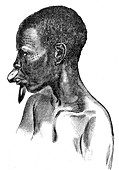 Woman from Wengo people, Africa, 19th century illustration