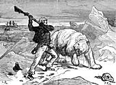 Man fighting off a polar bear, 19th century illustration