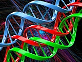 DNA (deoxyribonucleic acid) molecules, illustration