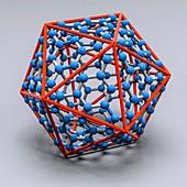 Nanovirus capsid, illustration