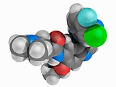 Pelitinib drug, molecular model