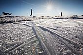 Ice patterns in a frozen puddle, Ingleborough, UK