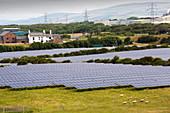 Solar farm and wind turbines, Barrow-in-Furness, England