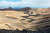 Agricultural land, Lanzarote, Canary Islands