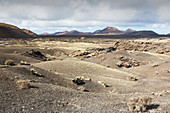 Lava fields, Lanzarote, Canary Islands