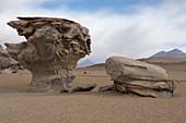 El Arbol de Piedra, Siloli Desert, Bolivia